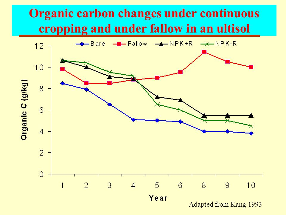 Organic carbon changes under continuous cropping and under fallow in an ultisol Adapted from Kang 1993