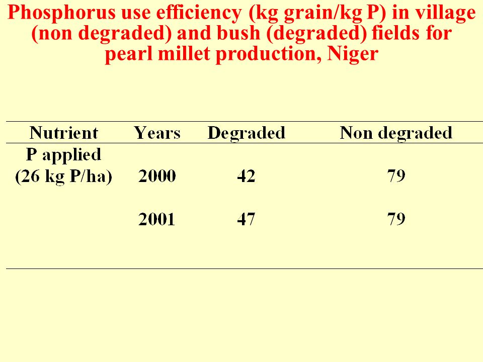 Phosphorus use efficiency (kg grain/kg P) in village (non degraded) and bush (degraded) fields for pearl millet production, Niger
