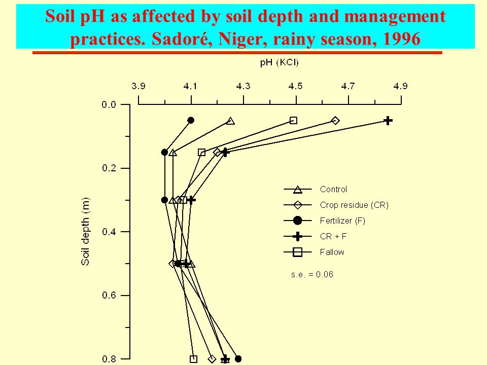 Soil pH as affected by soil depth and management practices. Sadoré, Niger, rainy season, 1996
