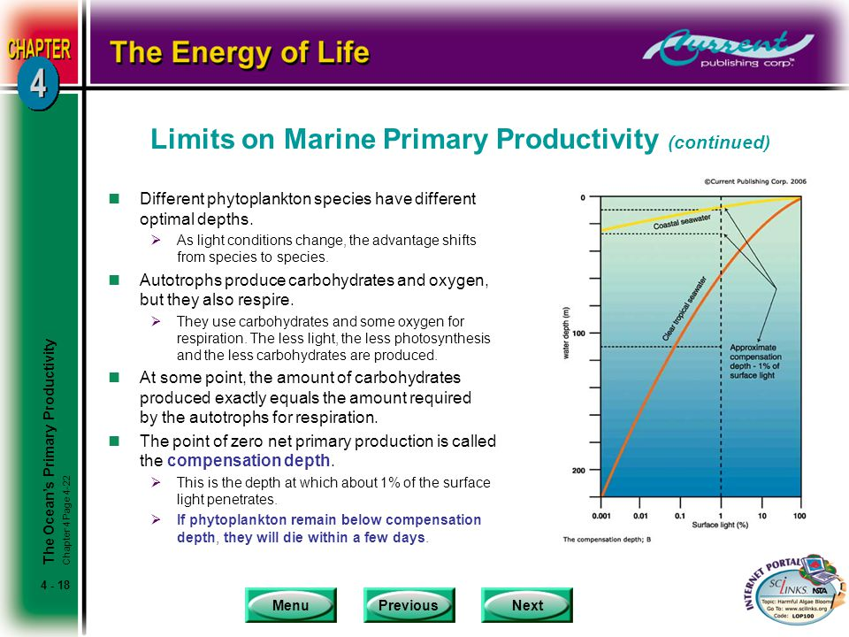 MenuPreviousNext 4 - 18 Limits on Marine Primary Productivity (continued) nDifferent phytoplankton species have different optimal depths.  As light c