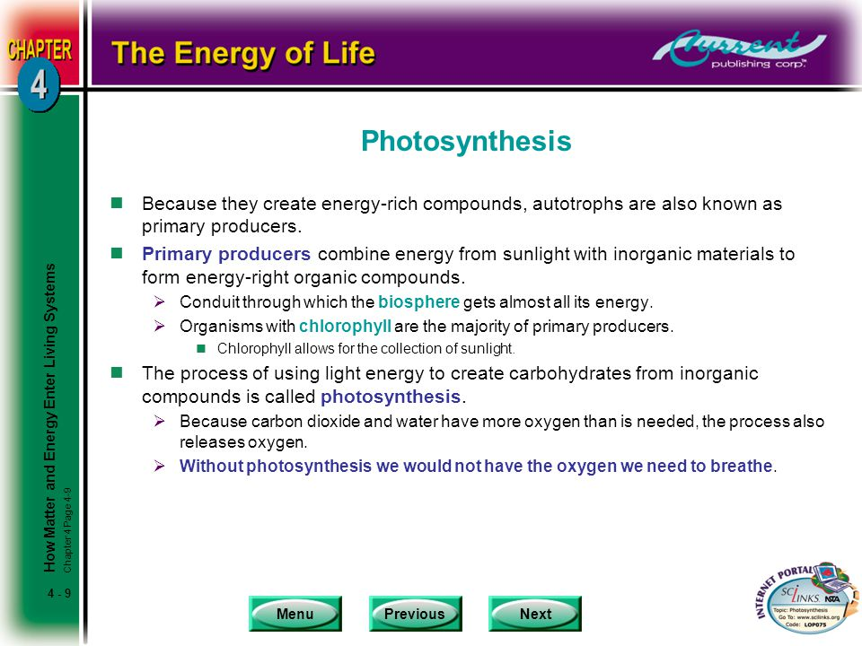 MenuPreviousNext 4 - 9 Photosynthesis nBecause they create energy-rich compounds, autotrophs are also known as primary producers. nPrimary producers c