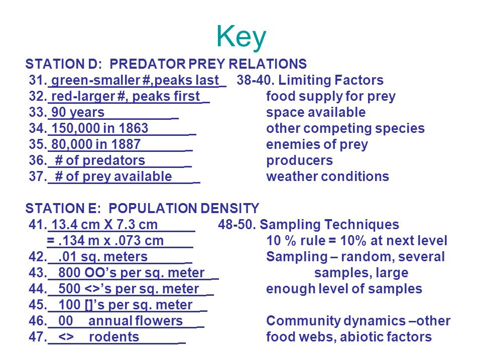 Key STATION D: PREDATOR PREY RELATIONS 31. green-smaller #,peaks last_ 38-40. Limiting Factors 32. red-larger #, peaks first _food supply for prey 33.
