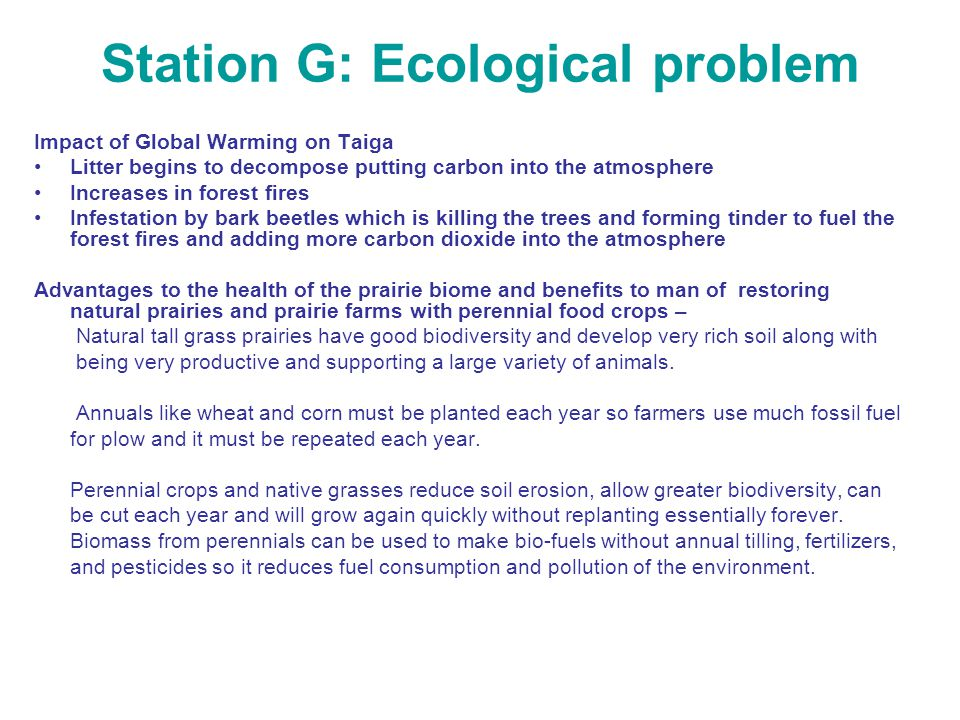 Station G: Ecological problem Impact of Global Warming on Taiga Litter begins to decompose putting carbon into the atmosphere Increases in forest fire