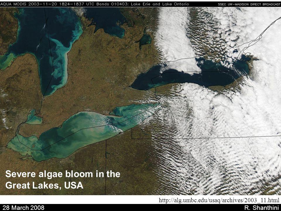 28 March 2008 R. Shanthini http://alg.umbc.edu/usaq/archives/2003_11.html Severe algae bloom in the Great Lakes, USA