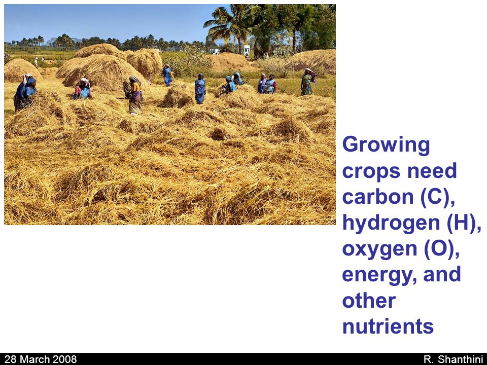 Growing crops need carbon (C), hydrogen (H), oxygen (O), energy, and other nutrients