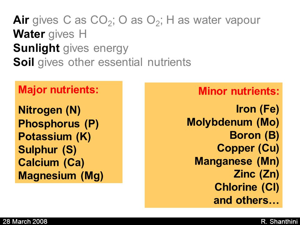 Air gives C as CO 2 ; O as O 2 ; H as water vapour Water gives H Sunlight gives energy Soil gives other essential nutrients 28 March 2008 R. Shanthini