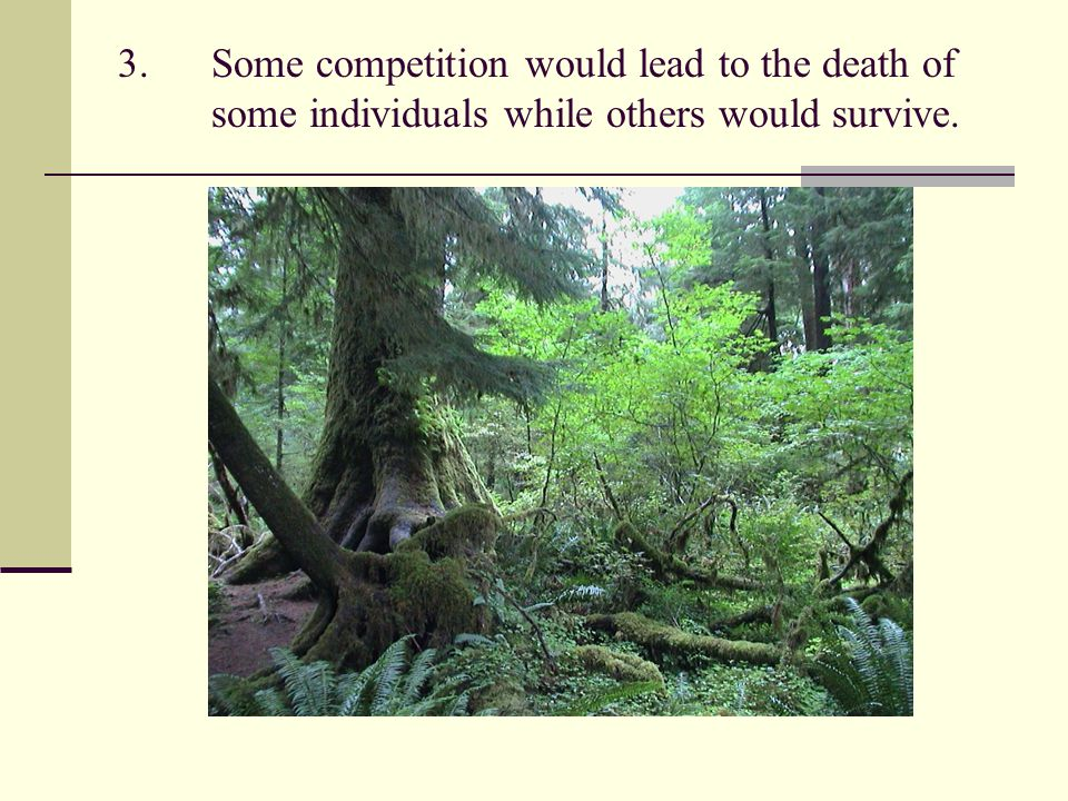 3.Some competition would lead to the death of some individuals while others would survive.