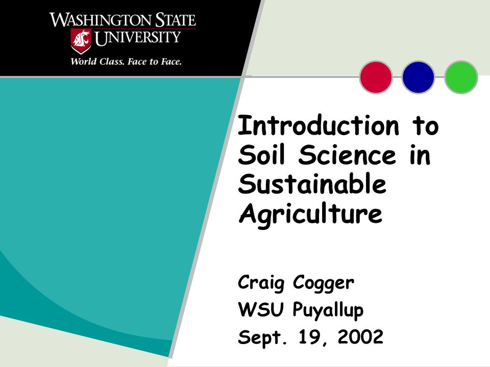 Introduction to Soil Science in Sustainable Agriculture Craig Cogger WSU Puyallup Sept. 19, 2002