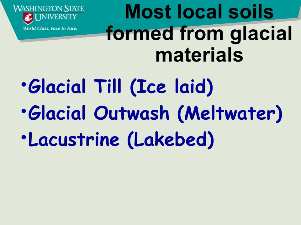 Most local soils formed from glacial materials Glacial Till (Ice laid) Glacial Outwash (Meltwater) Lacustrine (Lakebed)