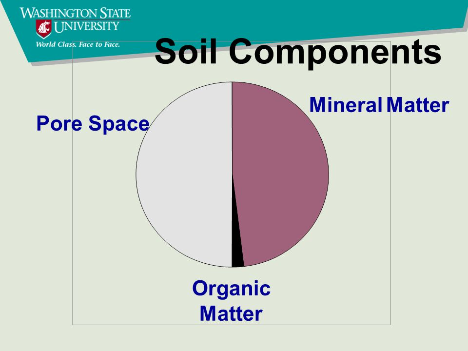 Mineral Matter Pore Space Organic Matter Soil Components