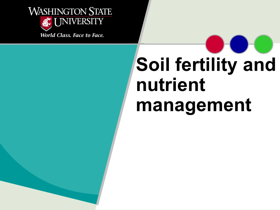 Soil fertility and nutrient management