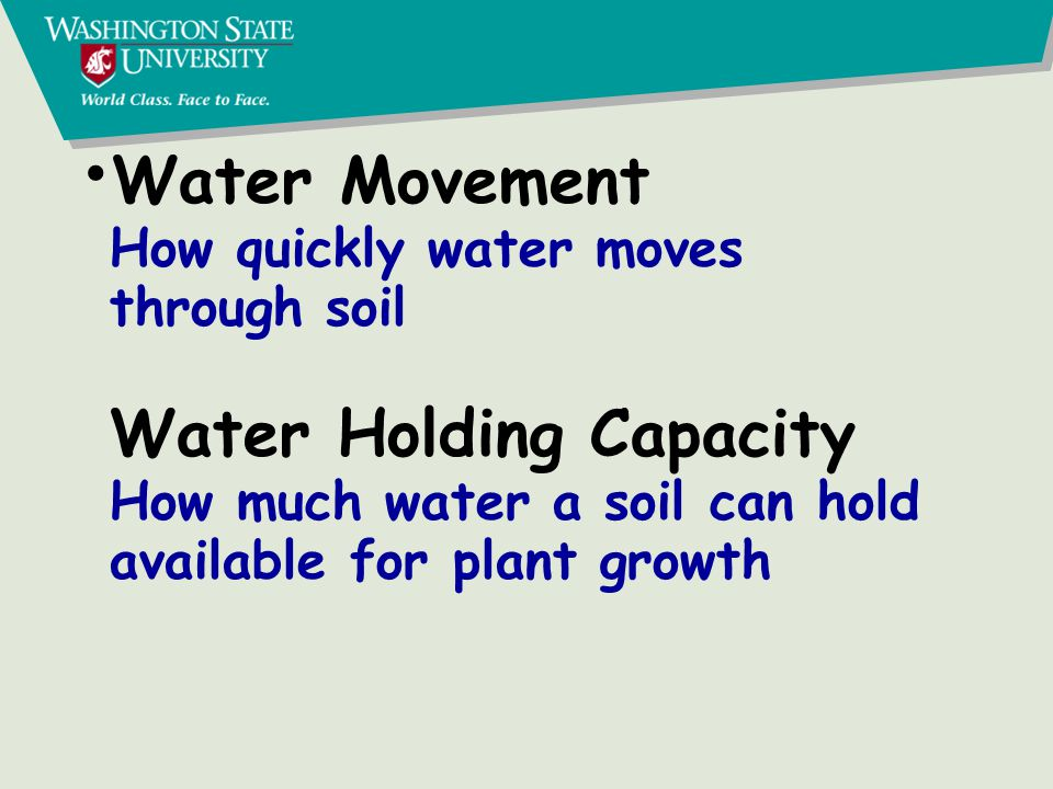 Soil pores and water movement Macropores: Infiltration and drainage Capillary pores: Available water Micropores: Unavailable water