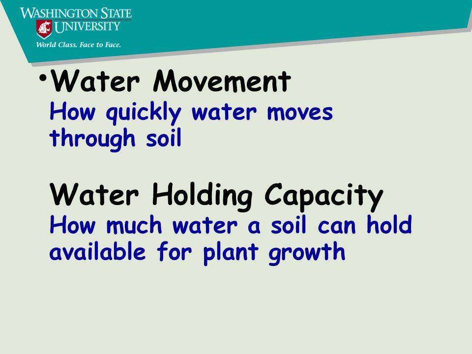 Organic N NH 4 + NO 3 - LeachingGases Plants, Microbes Plant residues, Manure Nitrogen Cycle