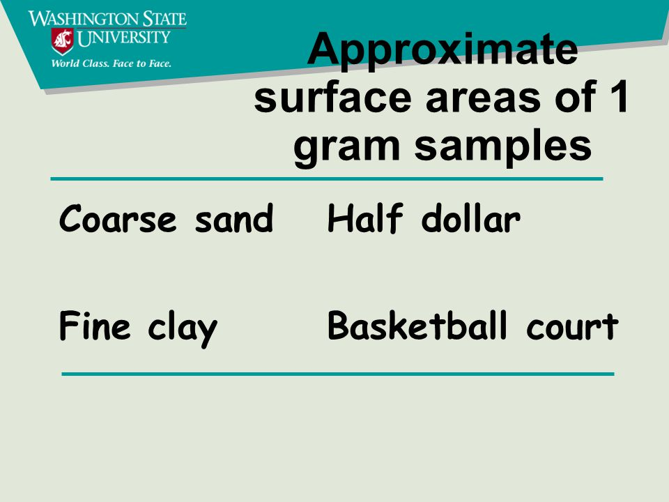 Glacial lacustrine (lakebed) soil Fine texture, high water holding capacity, hard to work when wet or very dry.