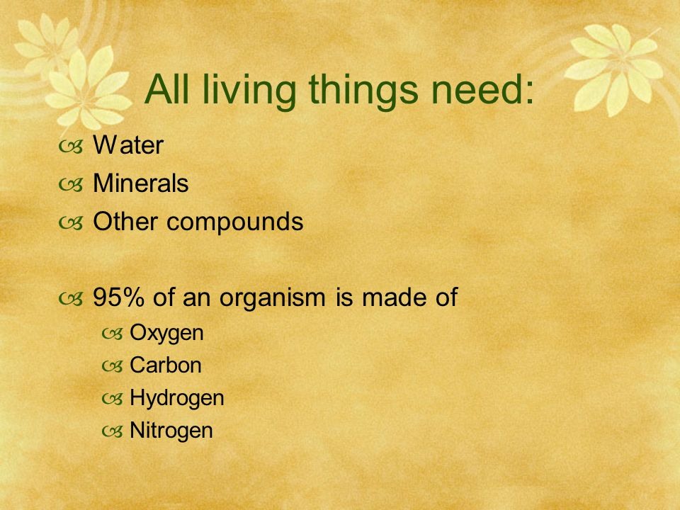 All living things need:  Water  Minerals  Other compounds  95% of an organism is made of  Oxygen  Carbon  Hydrogen  Nitrogen