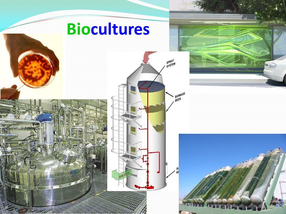 Biocultures