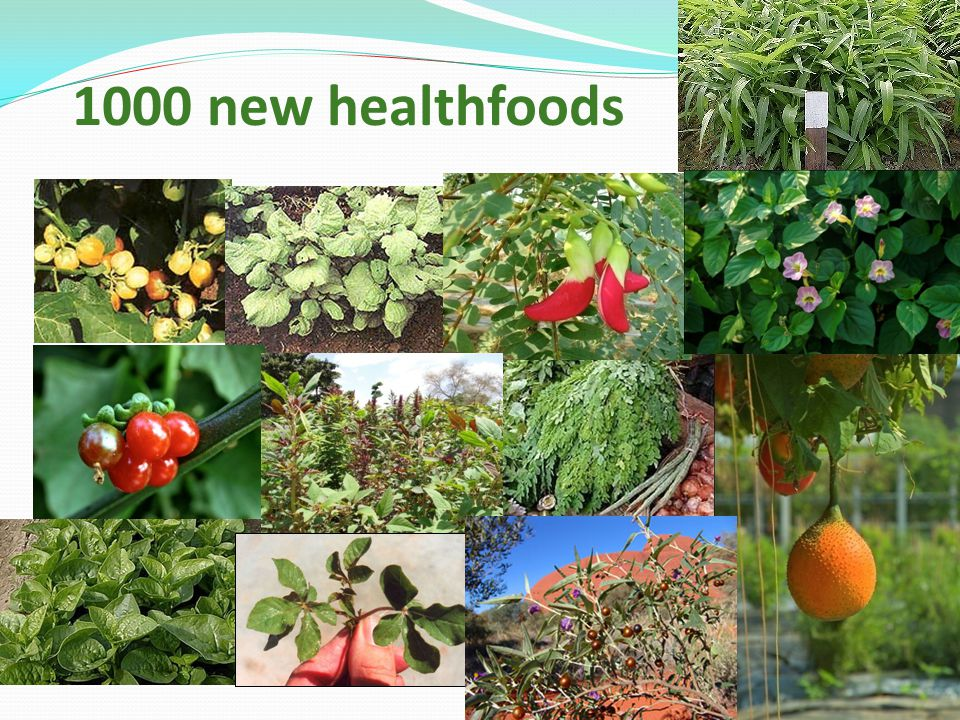 1000 new healthfoods