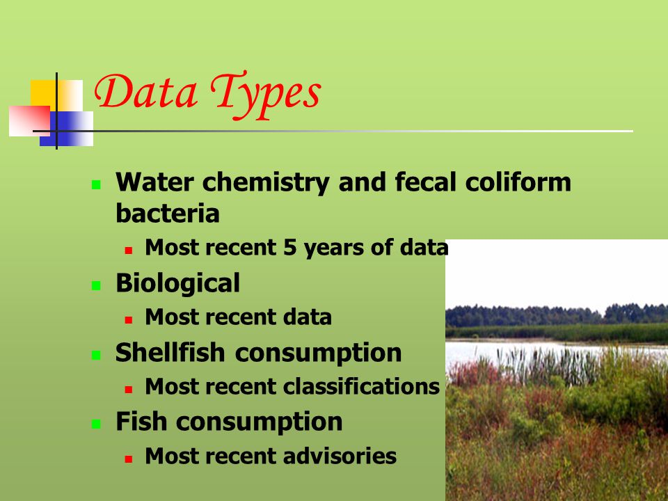 Data Types Water chemistry and fecal coliform bacteria Most recent 5 years of data Biological Most recent data Shellfish consumption Most recent classifications Fish consumption Most recent advisories