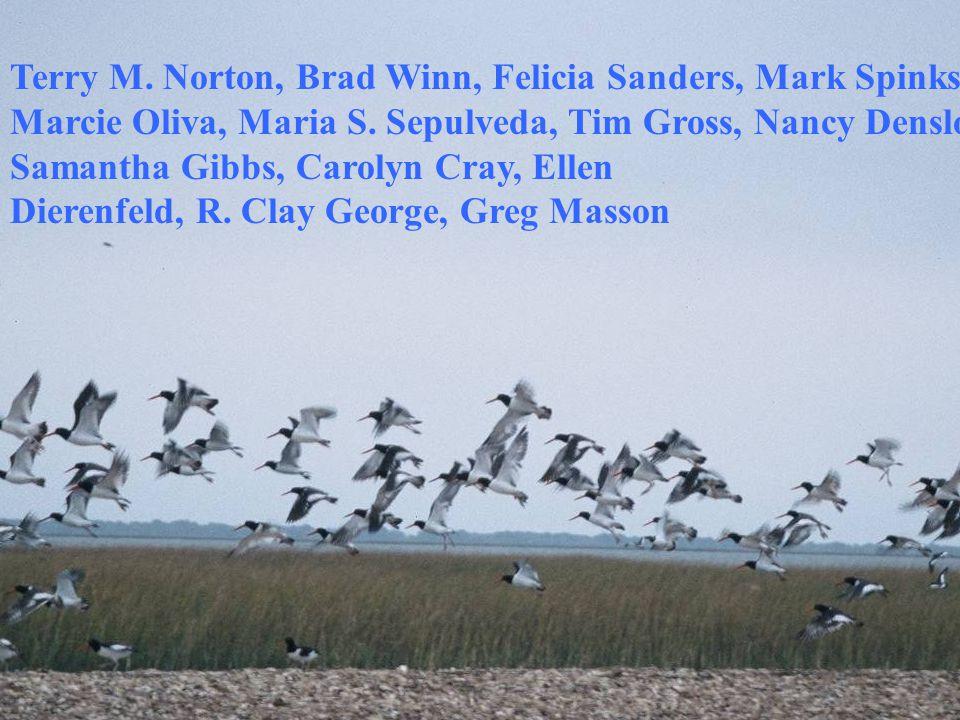 Terry M. Norton, Brad Winn, Felicia Sanders, Mark Spinks, Marcie Oliva, Maria S.