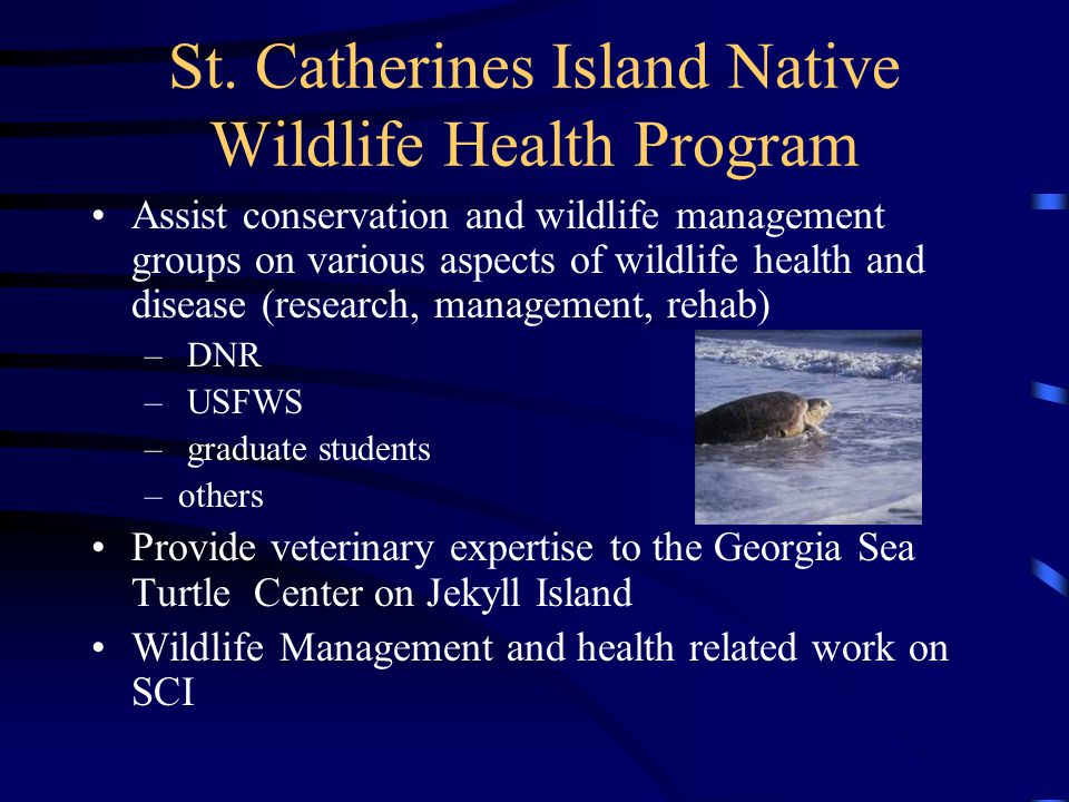 St. Catherines Island Native Wildlife Health Program Assist conservation and wildlife management groups on various aspects of wildlife health and dise