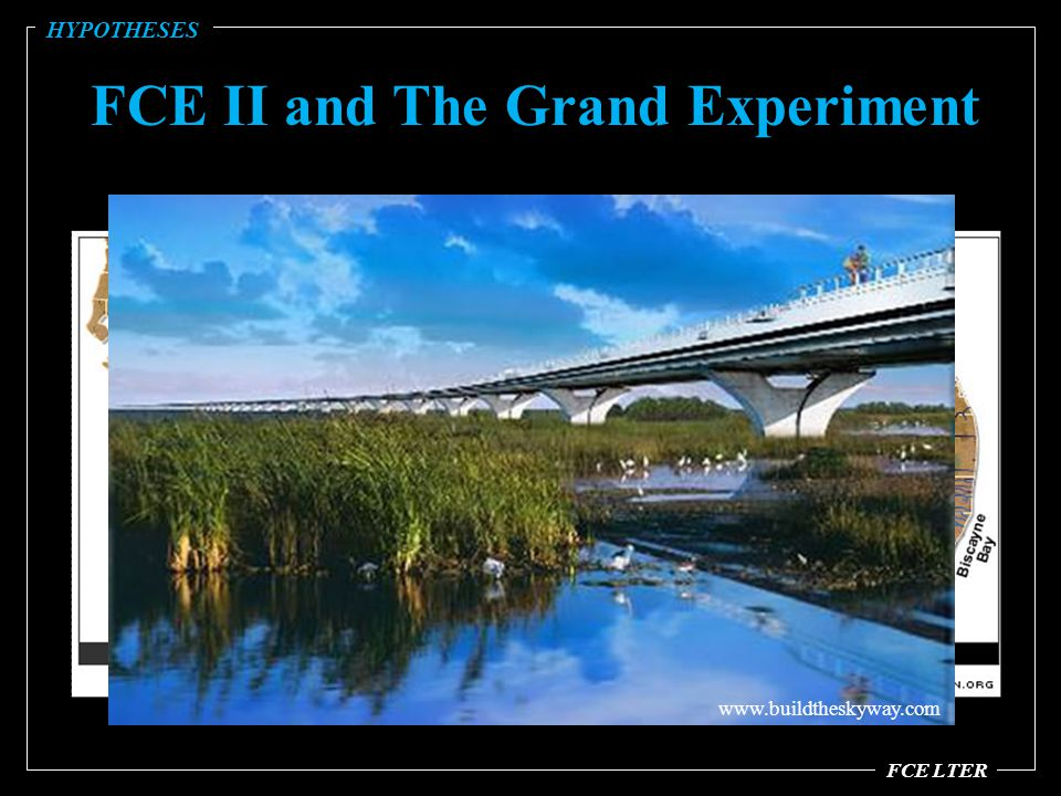 FCE II and The Grand Experiment FCE LTER HYPOTHESES www.buildtheskyway.com