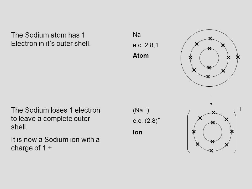 Na e.c. 2,8,1 (Na + ) Ion Atom e.c. (2,8) + The Sodium loses 1 electron to leave a complete outer shell. It is now a Sodium ion with a charge of 1 + T