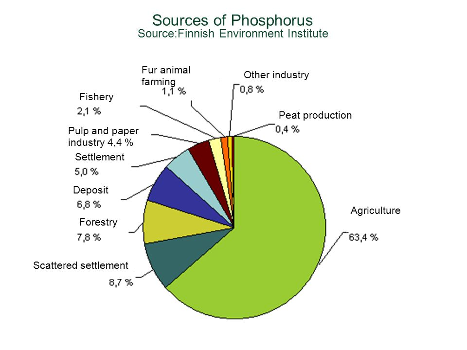 Sources of Phosphorus Source:Finnish Environment Institute Agriculture Scattered settlement Forestry Deposit Settlement Pulp and paper industry 4,4 % Fishery Fur animal farming Other industry Peat production
