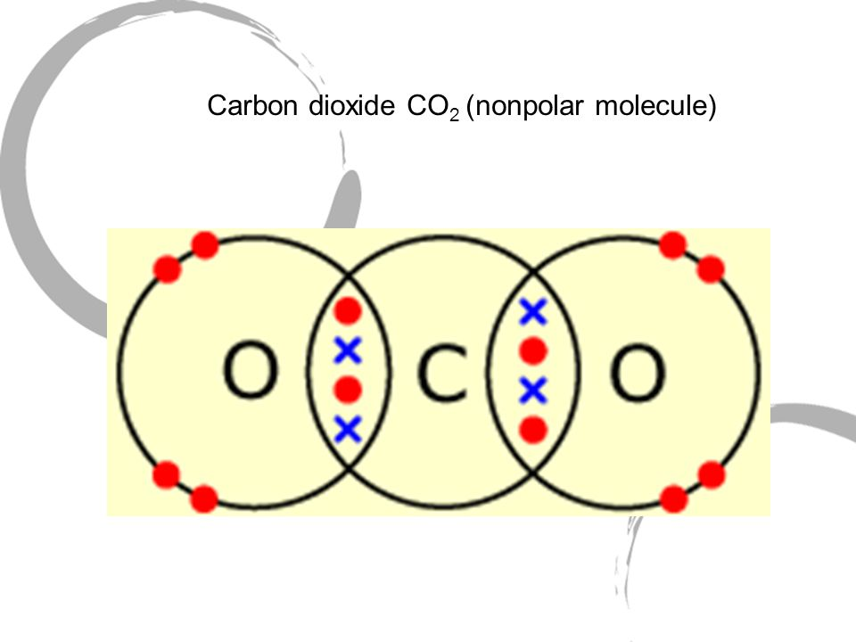 Carbon dioxide CO 2 (nonpolar molecule)