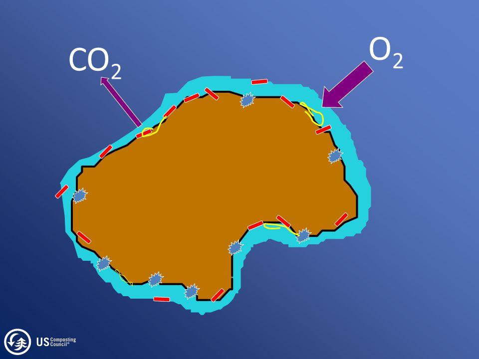 O2O2 CO 2