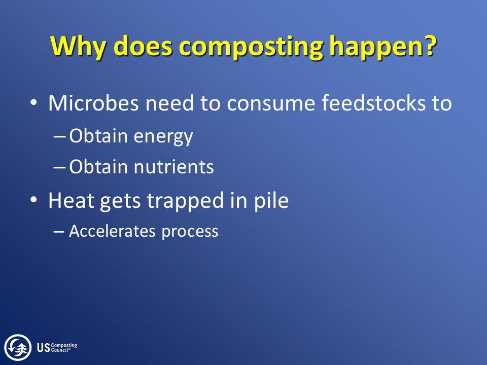 How do microbes obtain energy.