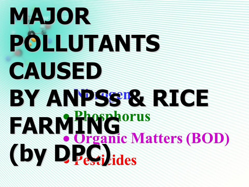  Nitrogen  Phosphorus  Organic Matters (BOD)  Pesticides MAJOR POLLUTANTS CAUSED BY ANPSs & RICE FARMING (by DPC)