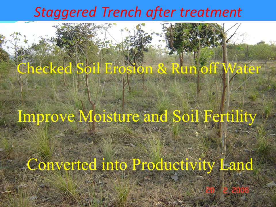 Staggered Trench after treatment Checked Soil Erosion & Run off Water Improve Moisture and Soil Fertility Converted into Productivity Land