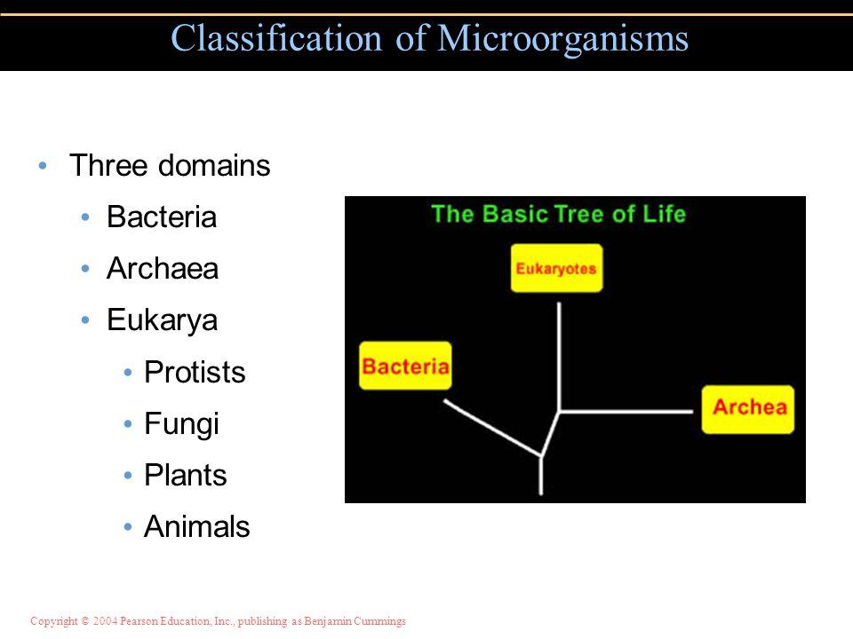 Copyright © 2004 Pearson Education, Inc., publishing as Benjamin Cummings Three domains Bacteria Archaea Eukarya Protists Fungi Plants Animals Classif