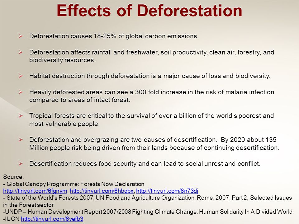  Deforestation causes 18-25% of global carbon emissions.