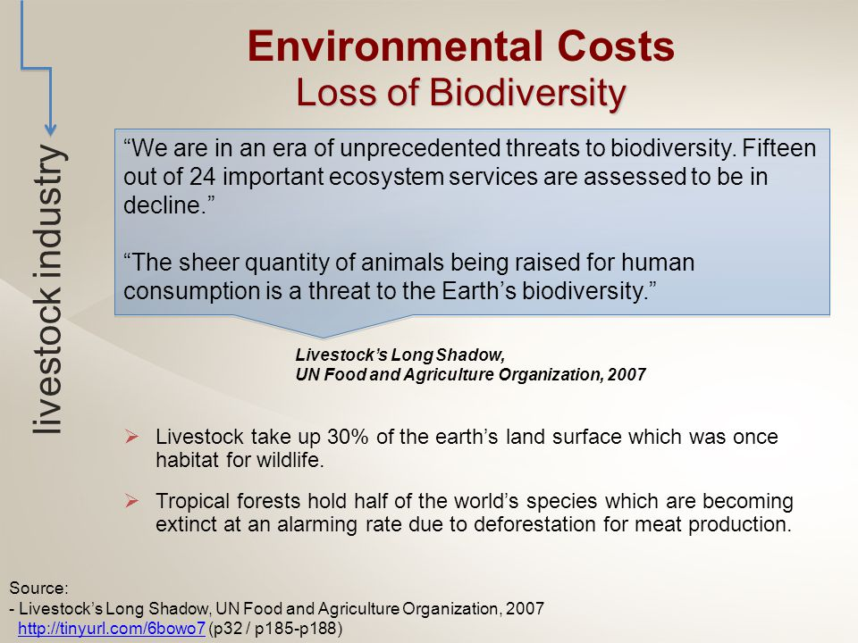  Livestock take up 30% of the earth's land surface which was once habitat for wildlife.