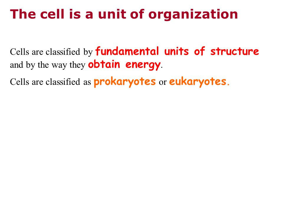 The cell is a unit of organization Cells are classified by fundamental units of structure and by the way they obtain energy.