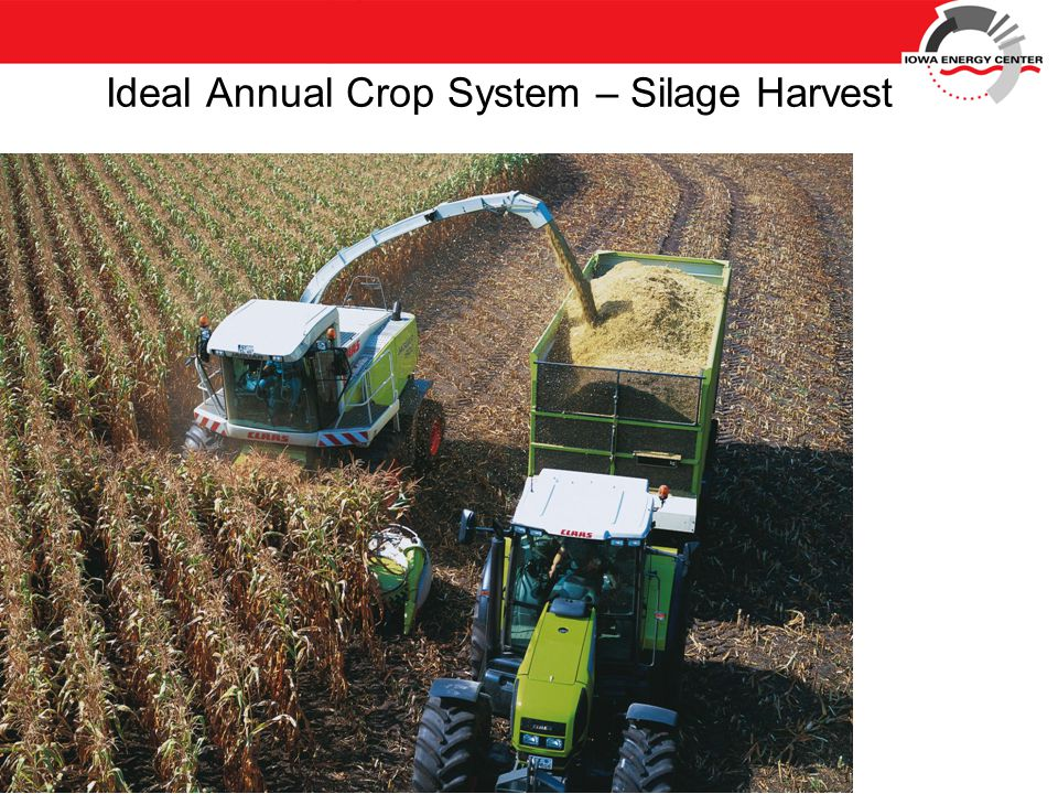 Ideal Annual Crop System – Silage Harvest