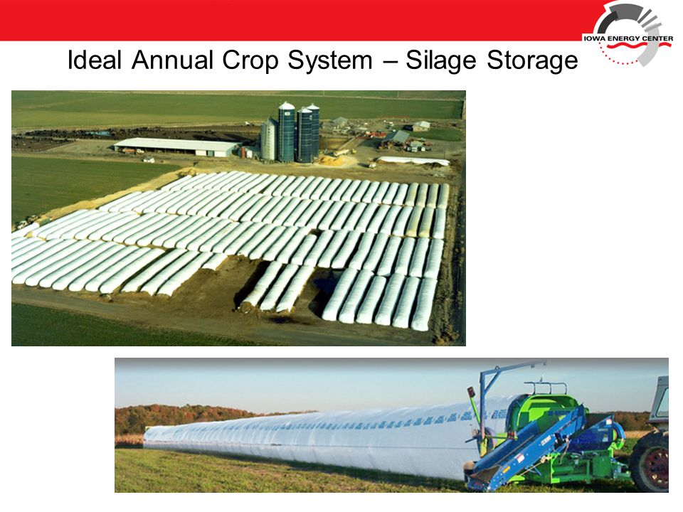 Ideal Annual Crop System – Silage Storage