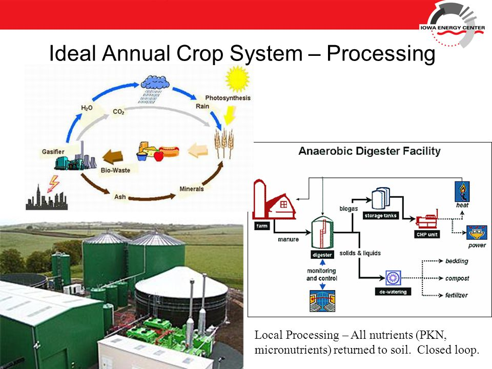Local Processing – All nutrients (PKN, micronutrients) returned to soil.