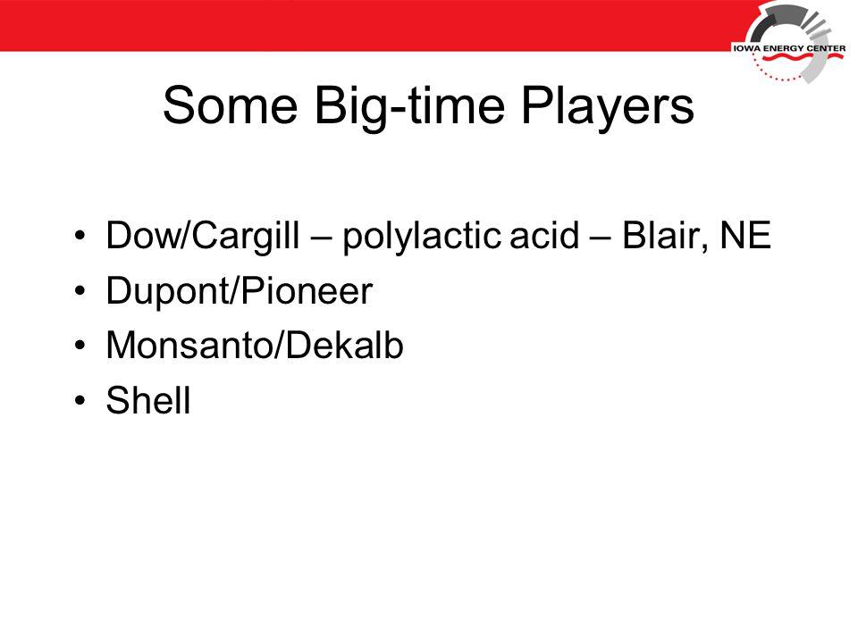 Some Big-time Players Dow/Cargill – polylactic acid – Blair, NE Dupont/Pioneer Monsanto/Dekalb Shell