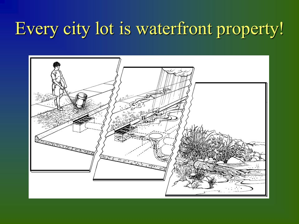 Every city lot is waterfront property!