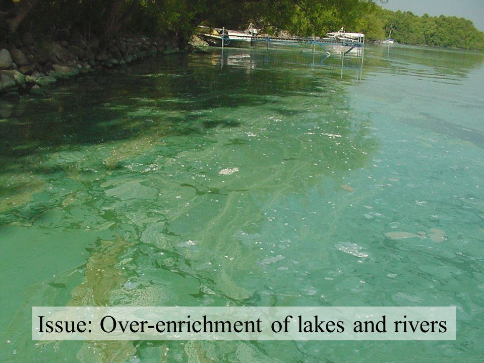 Issue: Over-enrichment of lakes and rivers