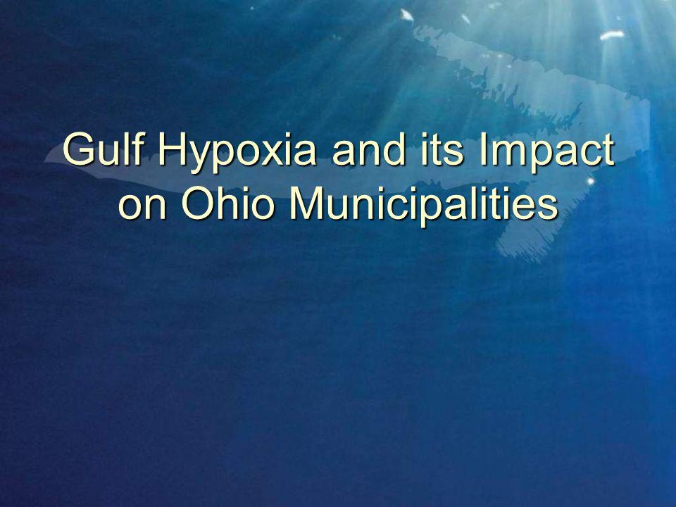 Gulf Hypoxia and its Impact on Ohio Municipalities