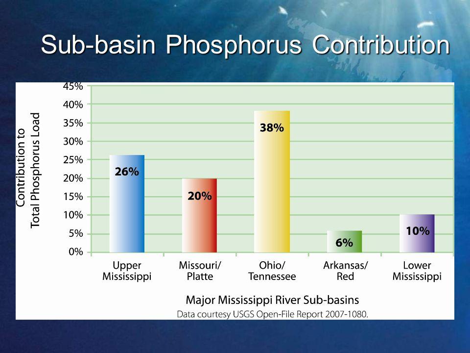 Sub-basin Phosphorus Contribution