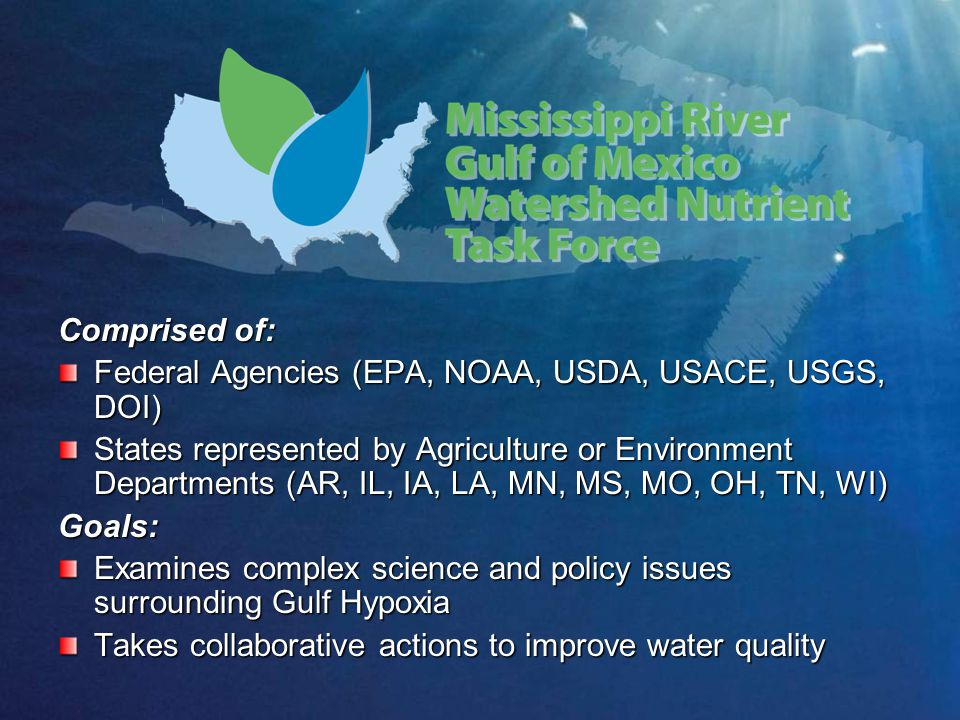 Comprised of: Federal Agencies (EPA, NOAA, USDA, USACE, USGS, DOI) States represented by Agriculture or Environment Departments (AR, IL, IA, LA, MN, MS, MO, OH, TN, WI) Goals: Examines complex science and policy issues surrounding Gulf Hypoxia Takes collaborative actions to improve water quality