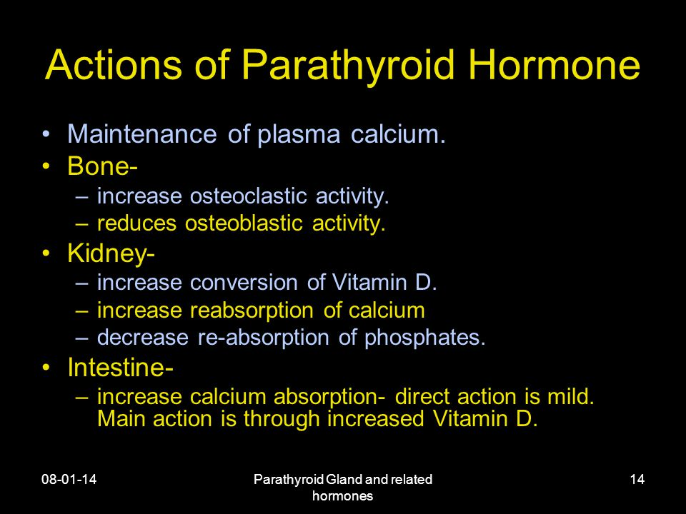 08-01-14Parathyroid Gland and related hormones 14 Actions of Parathyroid Hormone Maintenance of plasma calcium.