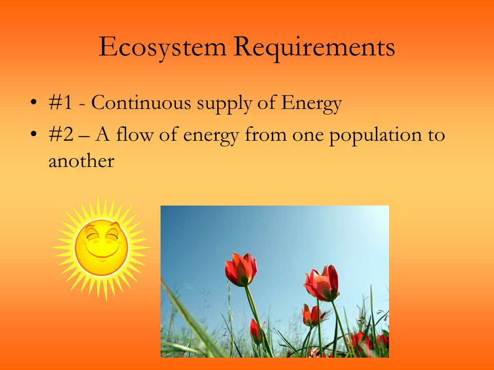 Ecosystem Requirements #1 - Continuous supply of Energy #2 – A flow of energy from one population to another