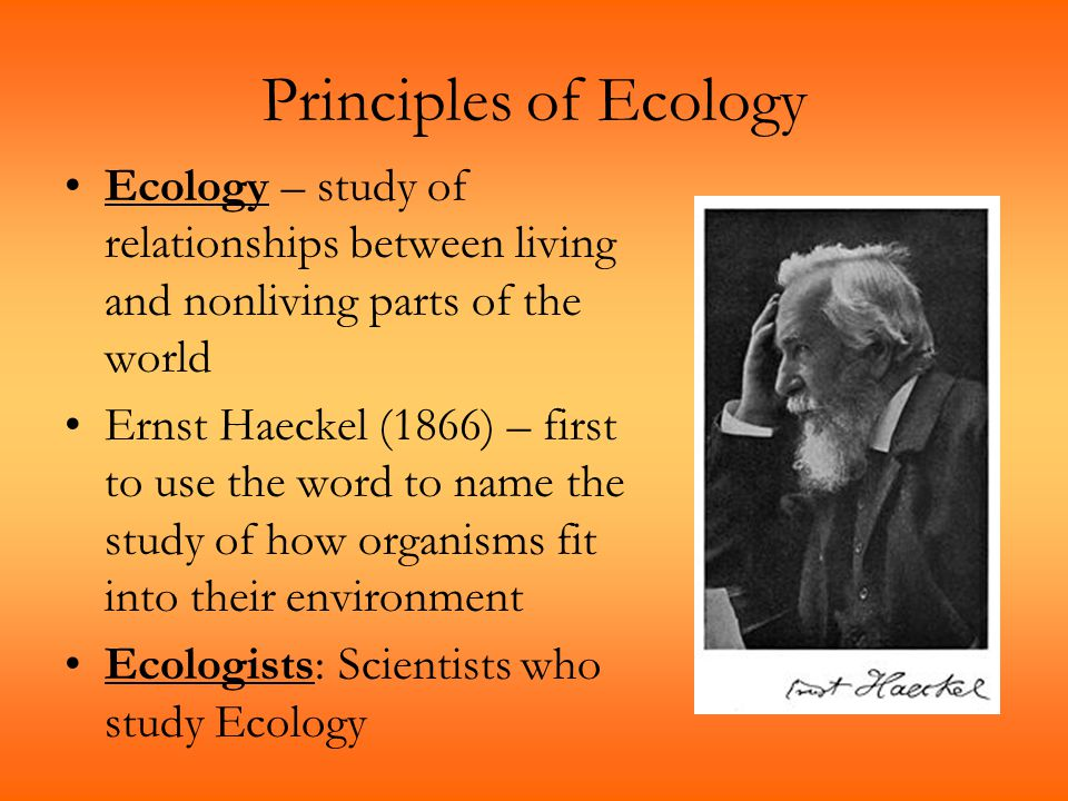 Principles of Ecology Ecology – study of relationships between living and nonliving parts of the world Ernst Haeckel (1866) – first to use the word to