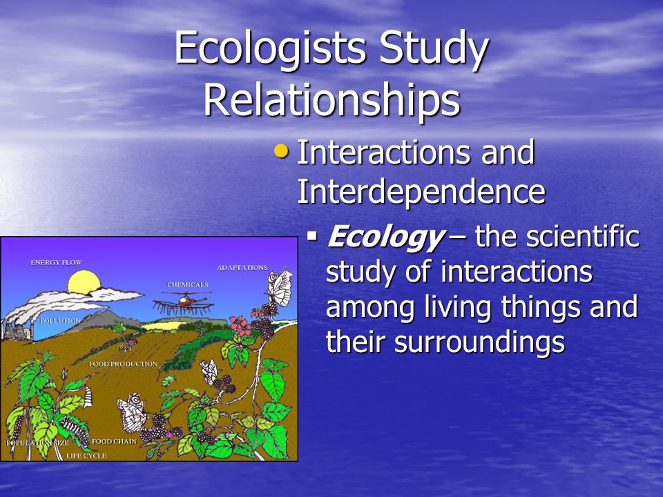 Ecologists Study Relationships Biosphere - part of a planet (the earth) in which life exists including land, water, and air Biosphere - part of a planet (the earth) in which life exists including land, water, and air