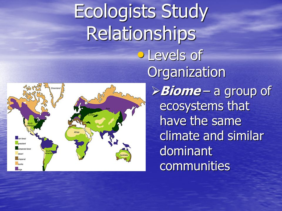 Ecologists Study Relationships Ecological Methods Ecological Methods  Observing – first step  Long term studies more beneficial-ecological change takes time  Surveys  Direct  Indirect  Determining Population Size  Catch and release  Quadrat Sampling
